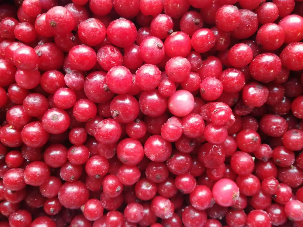 Ягоды Красная смородина